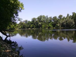 une riviere tranquille