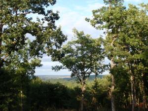 location lot - paysage